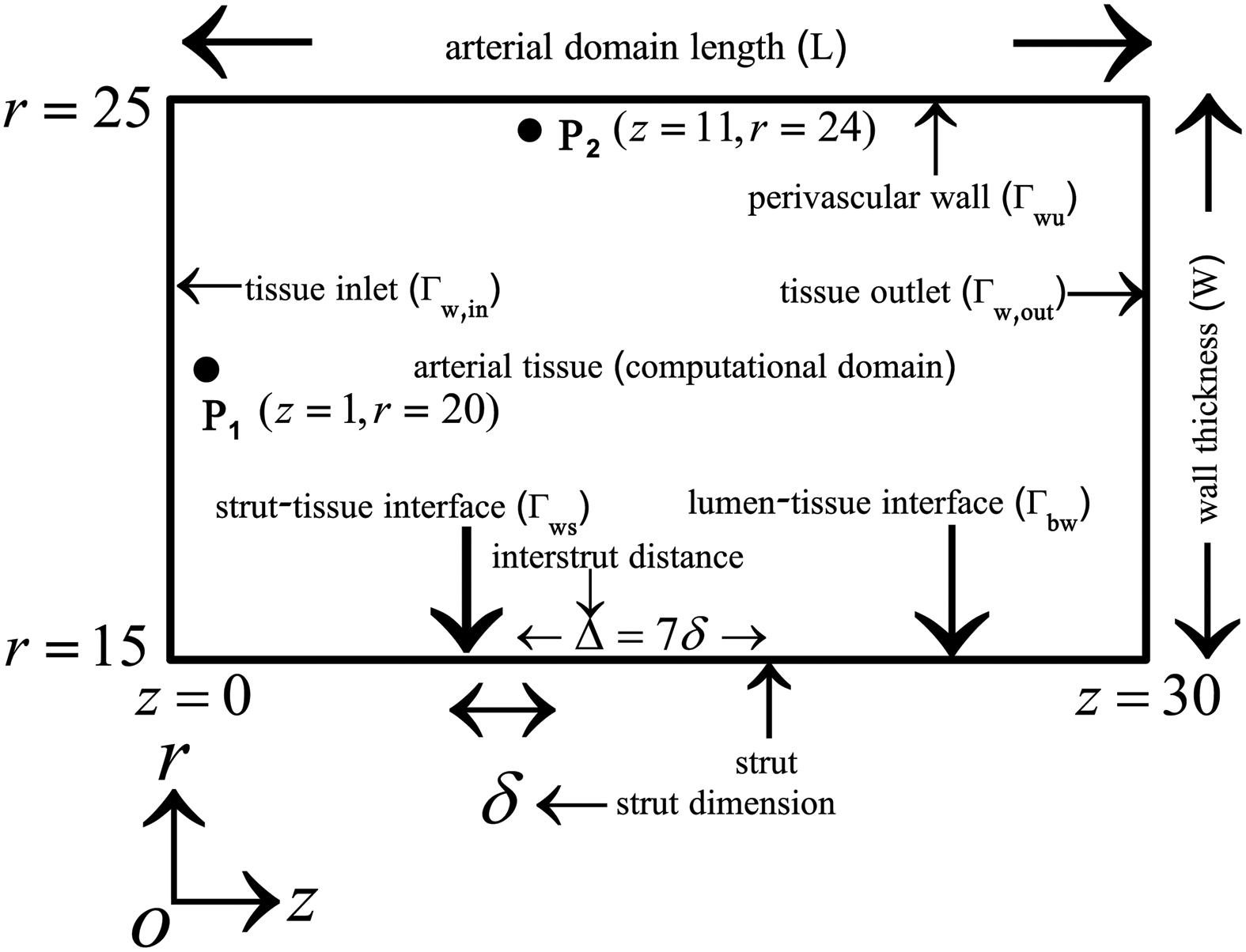 Schematic diagram of the computational domain.