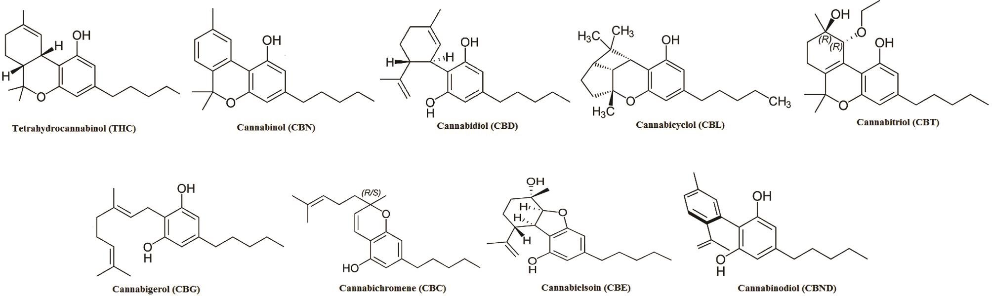 Structures of various cannabinoids isolated from <italic>C. sativa</italic> and their derivatives.