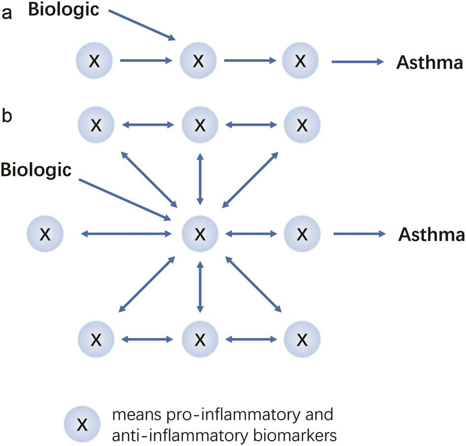 Two models of how a biologic affects asthma.