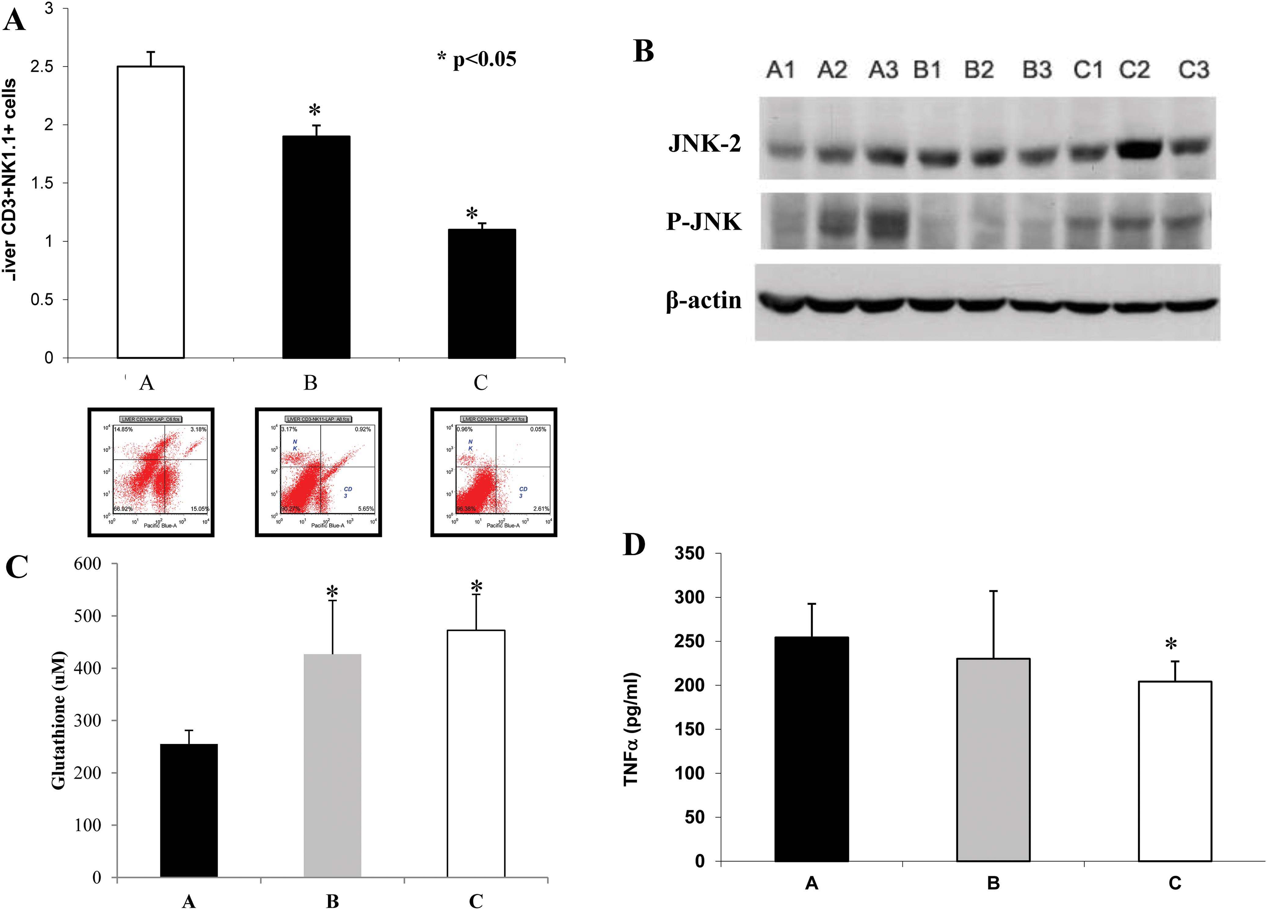 Effects on NKT, JNK expression, glutathione and TNF-α.