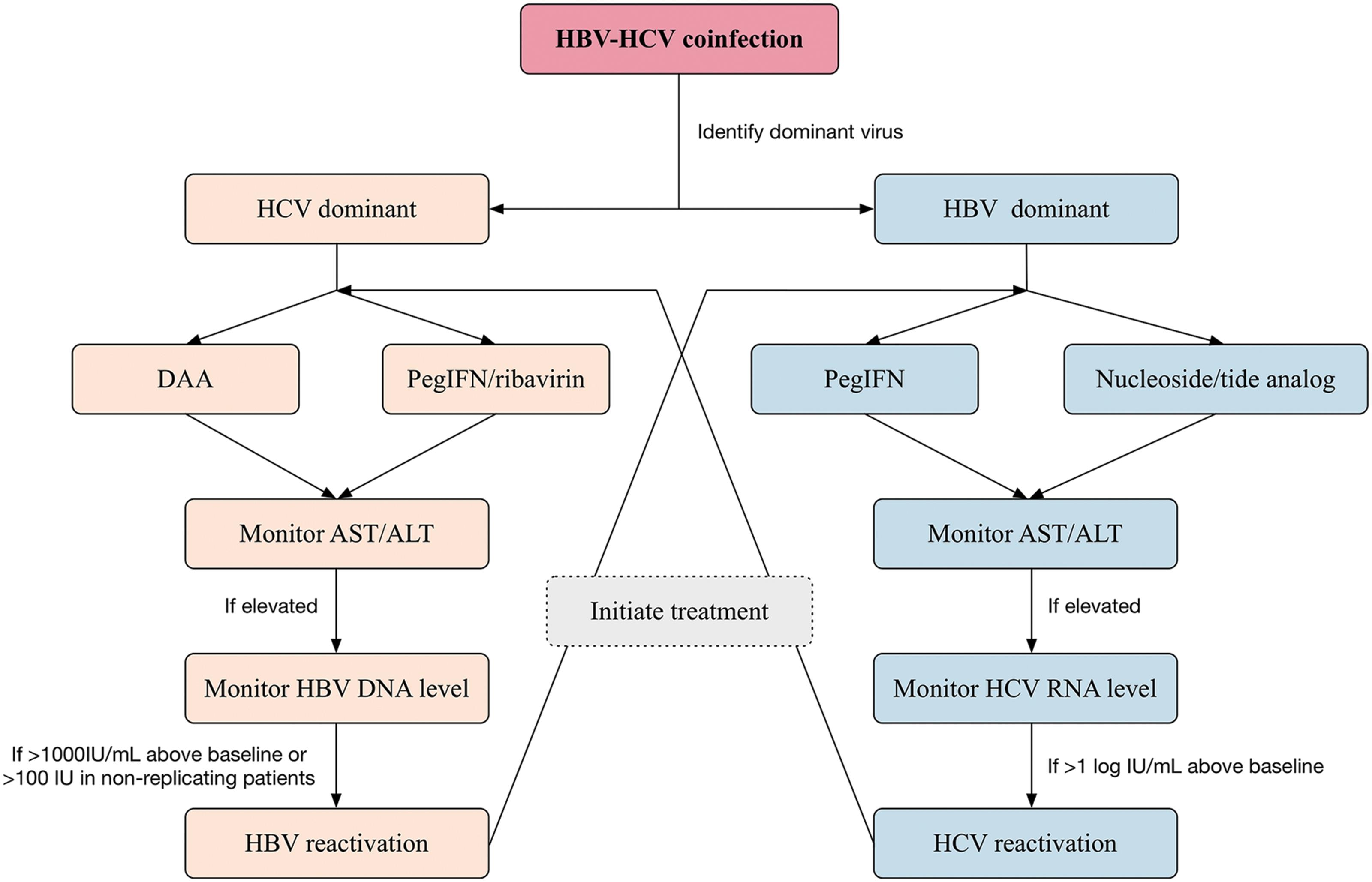 An algorithm for the treatment of HBV-HCV coinfection.
