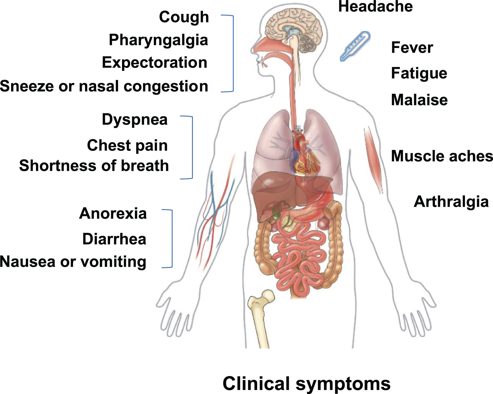 <bold>Clinical symptoms of patients with 2019 coronavirus disease</bold>.